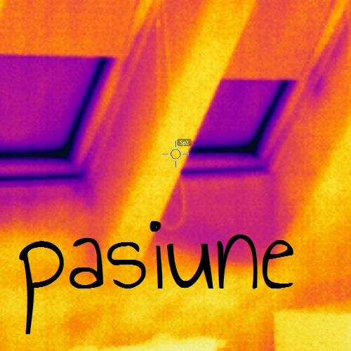 proiectare case eficiente energetic si case pasive  casa pasiva zecaph constuctie case eficiente solutii izolare solutii incalzire termografie  (36)