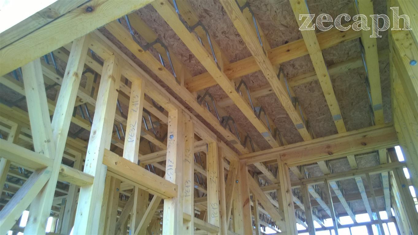 zecaph zero carbon passive house  timber frame structure (4)