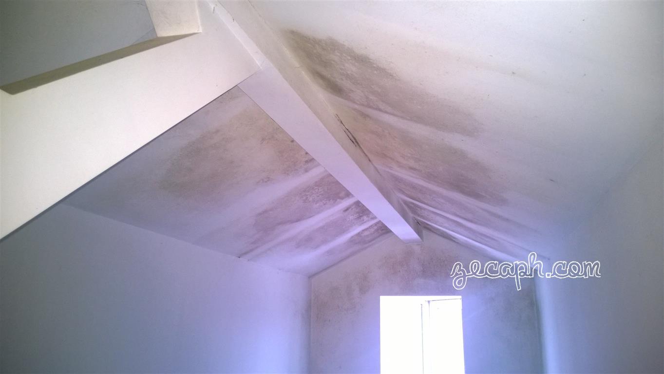 zecaph zero carbon passivhaus proiectare consultan constructii eficiente egrasia mucegaiul condensul puntile termice pierderi de caldura discomfort (13)f (Medium)